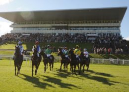 jockeys-and-horses-with-stand-in-background-691x411